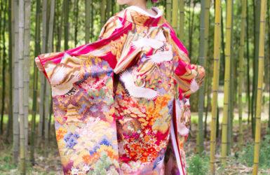 【色打掛】紫縦暈し山に鶴/【白無垢】裏紅刺繍雲霞に鶴