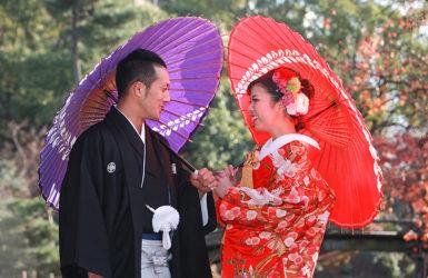 【白無垢】裏紅 群鶴/【色打掛】相良刺繍 吉祥花車に鶴